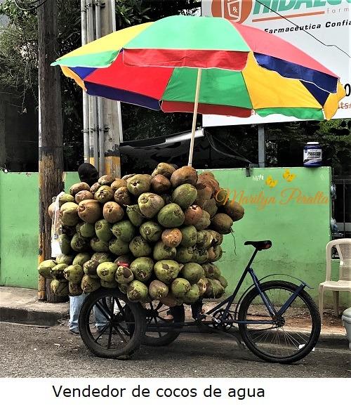 Vendedor de Cocos de Agua