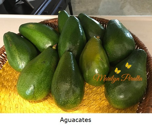 Aguacates 1