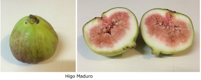 Higo maduro (2)