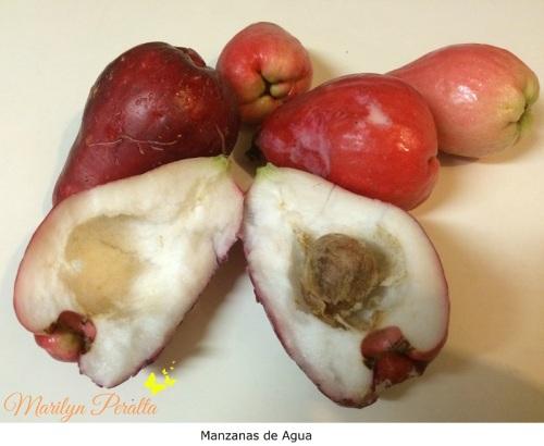 Manzanas de agua 1