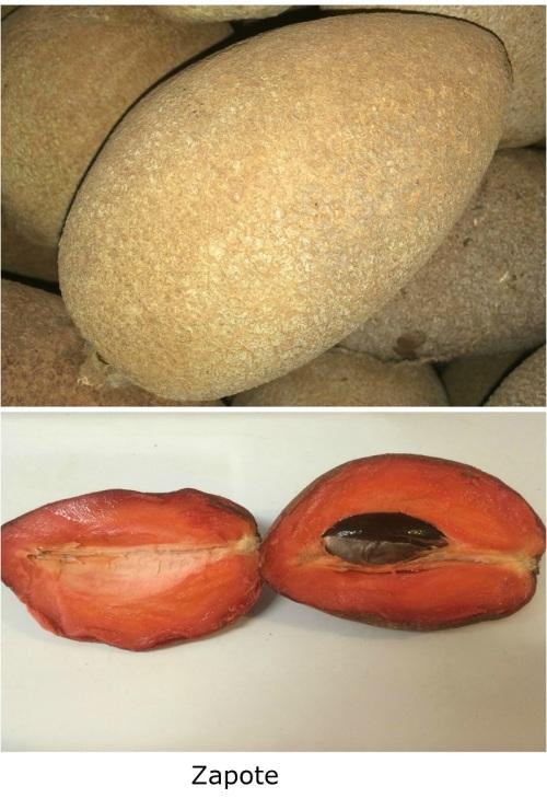 Fruto del Zapote