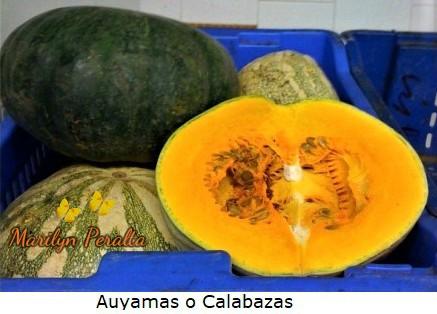Auyamas o Calabazas