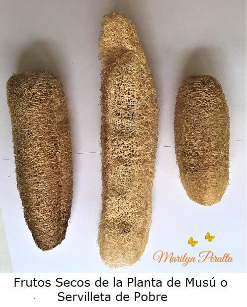 Frutos secos de Musu o Servilleta de Pobre